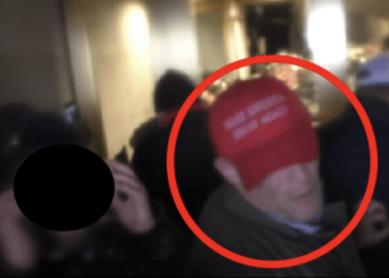 A Trump appointee who was arrested after participating in the Capitol riot asked a judge if he could be transferred to a cell with no cockroaches